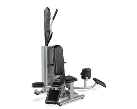standing hip extension stretch assisted reproductive technology