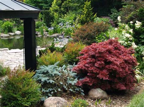 Stauden Japanischer Garten