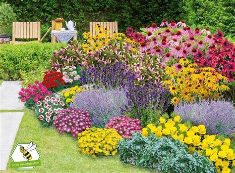 Stauden Pflanzen Beispiele