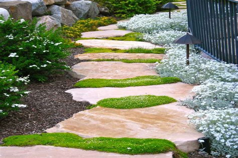 Steine Garten Weg