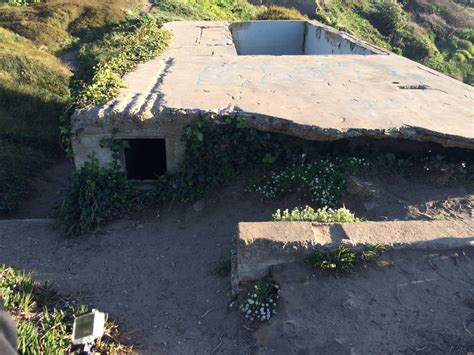 Storage Shed Building