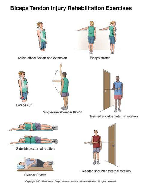 strained hip flexor rehab protocol for distal biceps tendon pain
