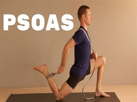 stretch for hip flexor psoas exercise youtube kids