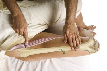 stretches for hip flexor muscles palpation of abdomen