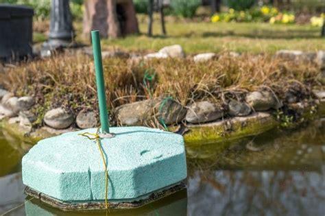 Teich Winterfest Machen