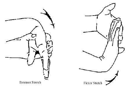 tight hip flexor muscles causes supination of forearm theraband