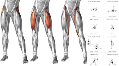 tight inner hip flexors