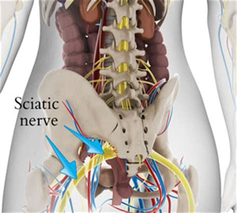 tight muscles in lower back aggravating nervestra for neuropathy