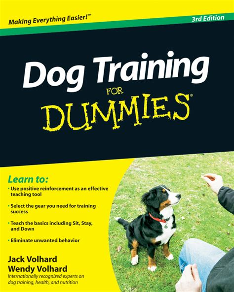 train dog for dummies