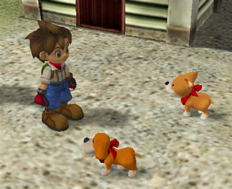 train dog harvest moon ds