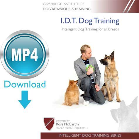 Training Intelligent Dogs