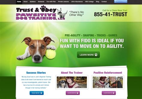 Trust And Obey Dog Training