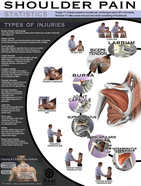 types of shoulder muscle injuries