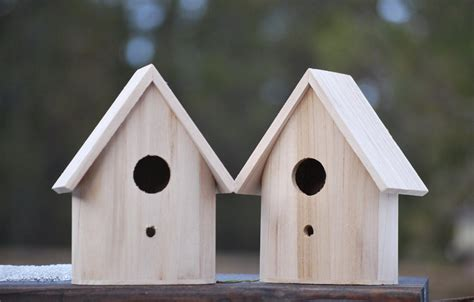 unfinished wooden birdhouses