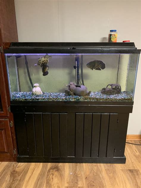 Used Fish Tank Stands