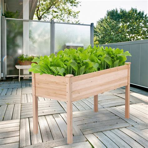 vegetable garden planter boxes pictures