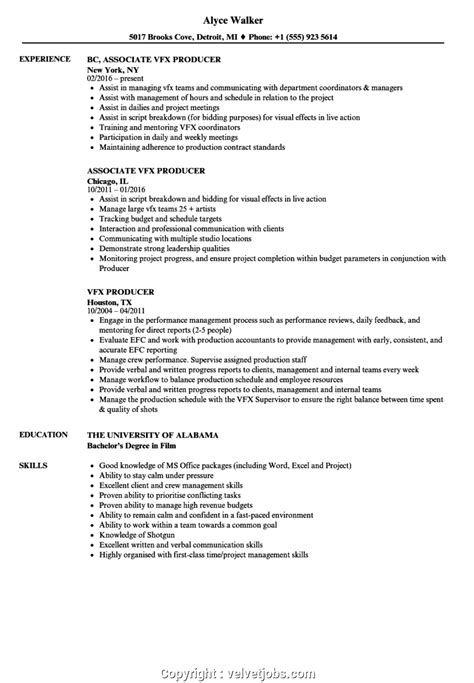 vfx project manager resume project management executive resume sample vfx resume samples - Vfx Resume Samples