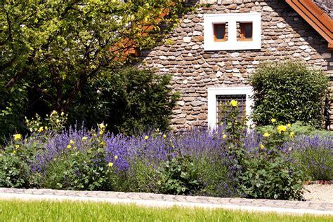 Vorgarten Ideen Mit Lavendel