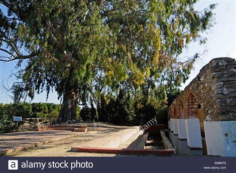 Waschplatz Alicante