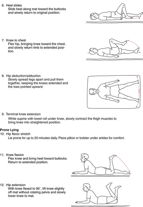 what are good hip flexor exercises after hip dislocation after hip
