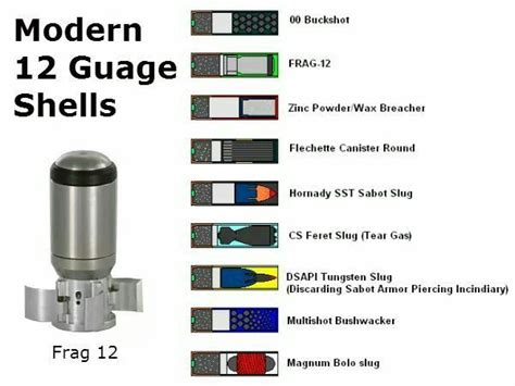 Shotgun-Question What Are The Different Types Of 12 Gauge Shotgun Shells.