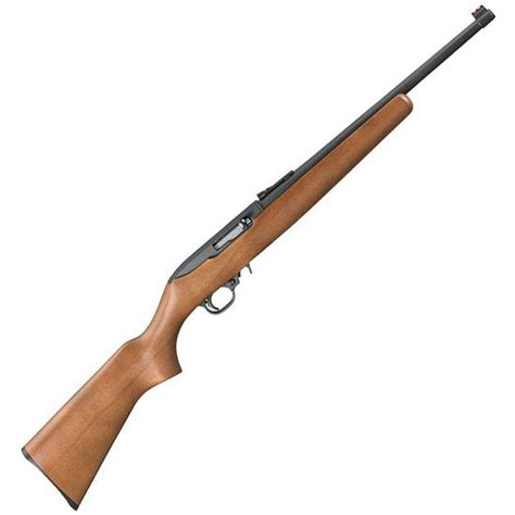 Ruger-Question What Is A Ruger 10 22 Rifle Worth.