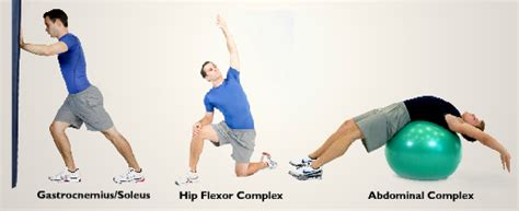what is the hip flexor complex nasm certification cost