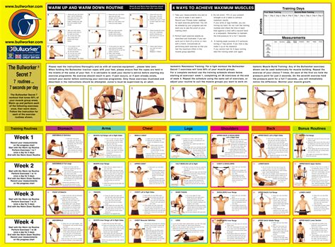where can i download exercise videos for free