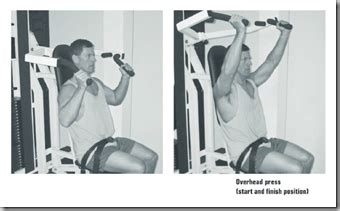 where is the hip flexor muscle located above bicep curls 21's
