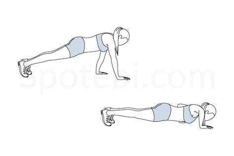 where is the hip flexor muscle located above bicep exercises no equipment
