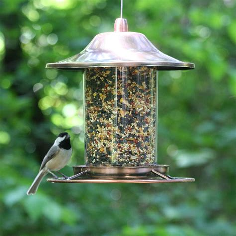wholesale bird feeders uk