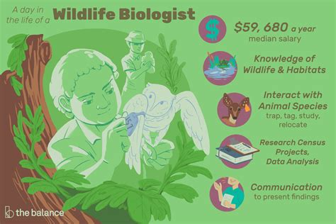 biologist resume sample wildlife biologist job description career info study - Sample Wildlife Biologist Resume