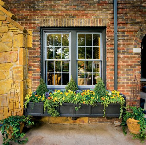 window box gardening ideas
