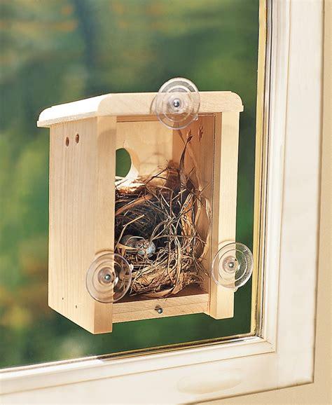 Window Bird House Plans