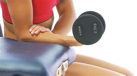 wrist flexion and extension muscles foot