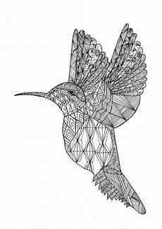 Ausmalbilder Erwachsene Vogel Vogel 22808 V 246 Gel Malbuch Fur Erwachsene