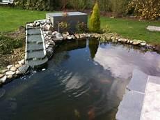 creation de bassin exterieur quels poissons choisir pour un bassin d ext 233 rieur