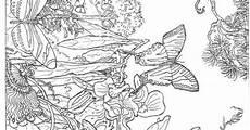 Ausmalbilder Zum Ausdrucken Natur Ausmalbilder Erwachsene Natur 695 Malvorlage Erwachsene