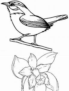 imagenes para colorear de los simbolos naturales simbolos naturales vzla para colorear