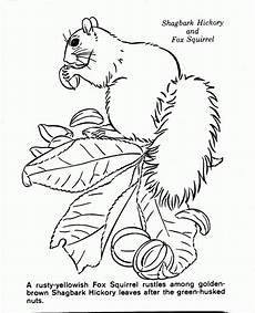 nature colouring pages to print 16387 nature drawing at getdrawings free