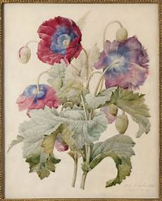 le pouvoir des fleurs joseph redout 233 1759 1840
