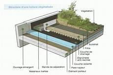 toit terrasse vegetal 232 best images about house vegetal roof on
