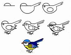 como dibujar un turpial pajaros para colorear