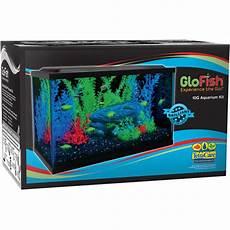 glofish 10 gallon aquarium kit ebay