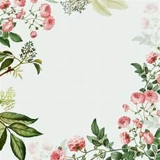 Blumen Malvorlagen Kostenlos Bearbeiten Rosa Blumenrahmen Der Kostenlosen Vektor