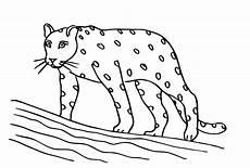 ausmalbilder zum drucken malvorlage leopard kostenlos 3