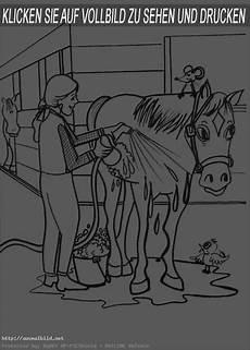 bilder zum ausmalen pferden pferde 23 ausmalbild