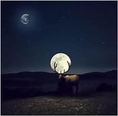 cendre de lune membres cendre de lune cr 233 ations