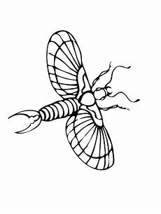 coloring pages to print 17540 flying earwig coloring page supercoloring