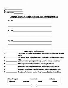 transportation worksheets for middle school 15201 cell transport active and passive transport worksheet osmosis diffusion